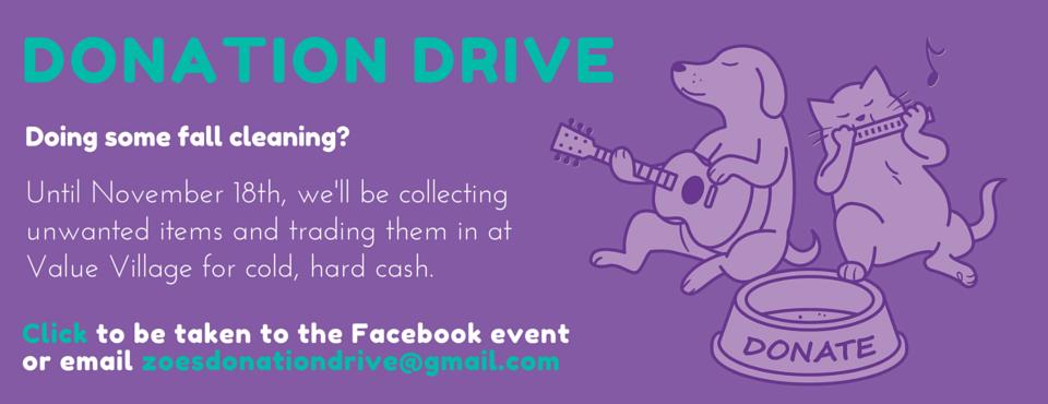 Zoe's donation drive
