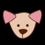 spaydog